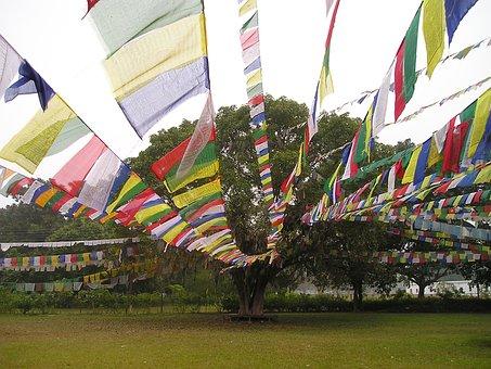 Prayer Flags, Buddhism, Lumpini, Nepal