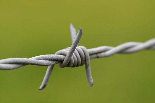 Barbed Wire, Pointed, Wire, Risk, Fence, Metal, Thorn