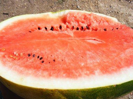 Nature, Fruits, Vegetables, Water, Melon, Lubenita
