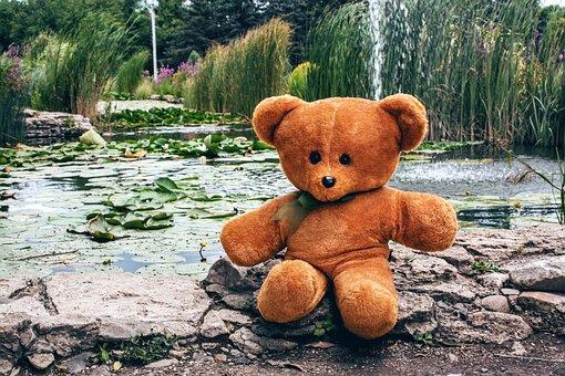 Bear, Teddy, Toy, Soft, Childhood, Sitting, Pond