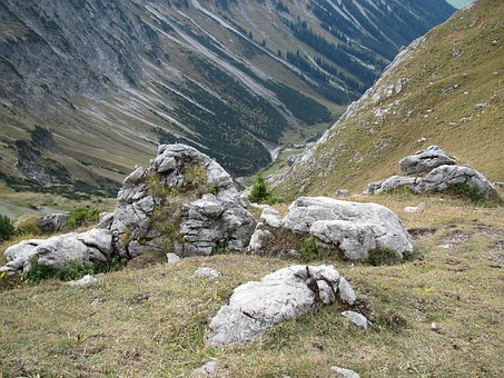 Foghorn, Stones, Overgrown