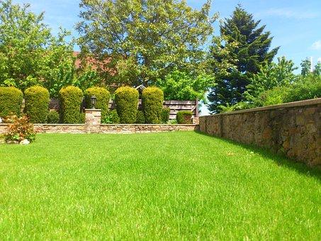 Meadow, Garden, Summer, Front Yard, Garden Wall, Rush