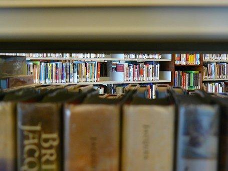 Library, Public Library, Books, Shelves, Bookshelf