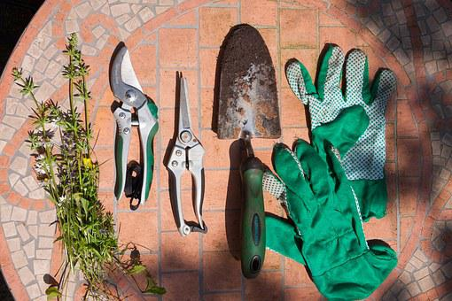 Scissors, Pruning Shears, Flowers Shovel, Blade, Small