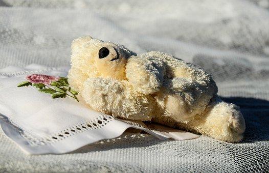 Teddy, Plush, Bears, Pillow, Sleep