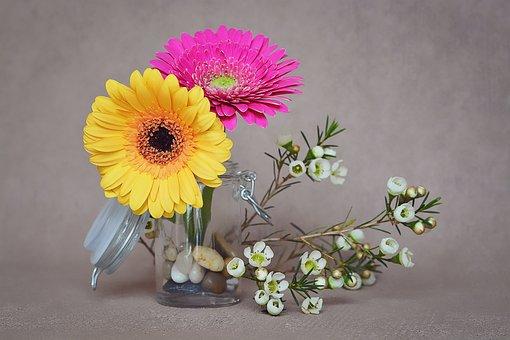 Gerbera, Flowers, Pink, Yellow, Spring Flowers