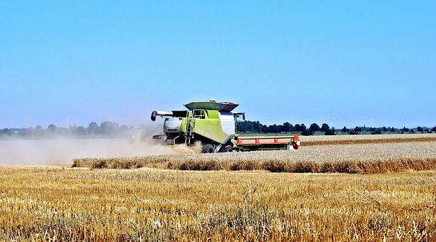 Harvest, Cereals, Machines, Agriculture, Field, Grain