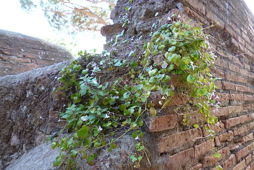 Ostia, Antica, Italy, Archaeological Site, Ruins, Wall