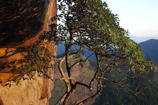 Pedra Da Gávea, Sol, Sunrise, Landscape, Light, Nature