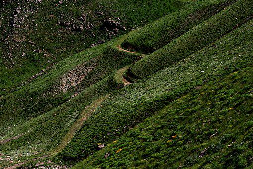 Nature, Landscape, Green, Sirnak, Turkey, Path