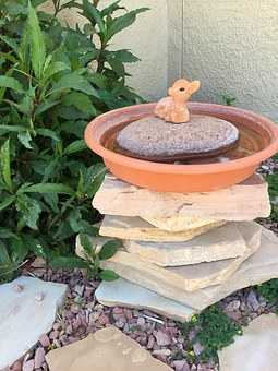 Diy Birdbath, Birds, Nature, Wildlife