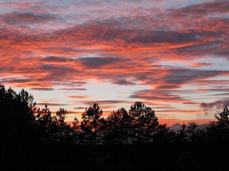 Sunset, Evening Sky, Pink Clouds, Sky, Landscape