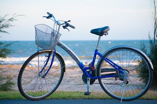 Bike, Your Road, Road, Vehicle, The Sea
