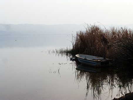 Reeds, Lake, Iznik, Turkey, Boat, Water, Calm, Peaceful