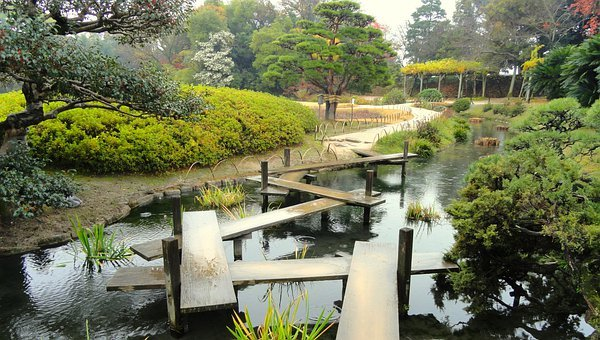 Okayama, Japan, Park, Garden, Trees, Plants, Botanical