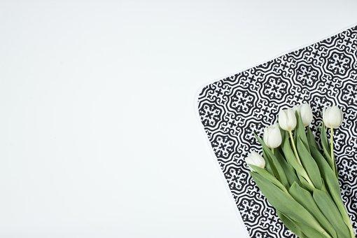 Flowers, Tulips, Model, Morocco