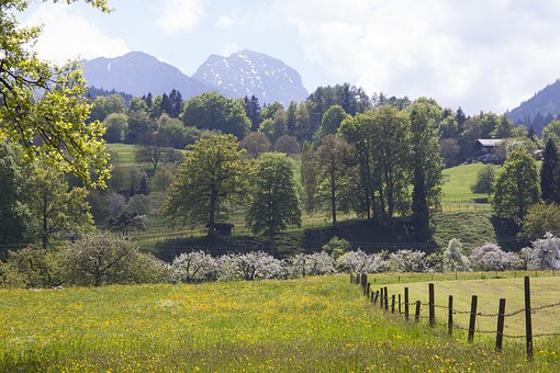 Spring, Sunshine, May, Mountains, Wendelstein, Trees