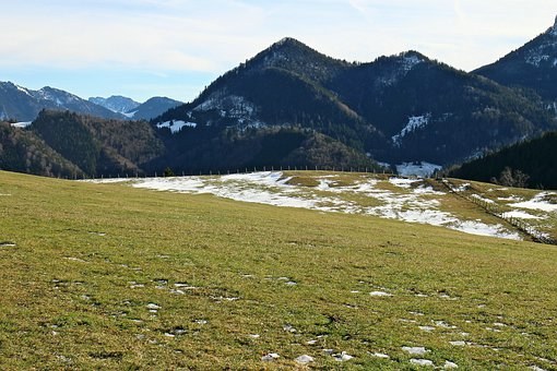 Mountains, Alpine Meadow, Alpine Pasture