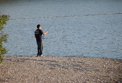 Fishing, Pole, Water, Lake, Atascadero, Landscape