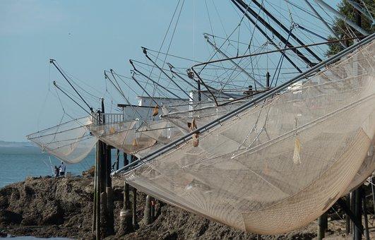 Fishing, Plaice, Estuary, Gironde