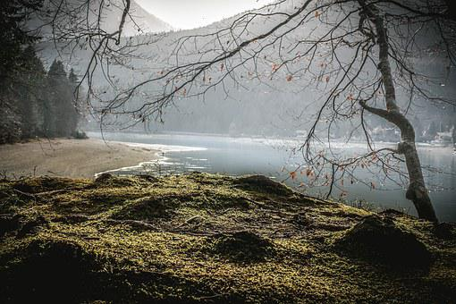 Mountains, Nature, Lake, Landscape, Walchensee, Water