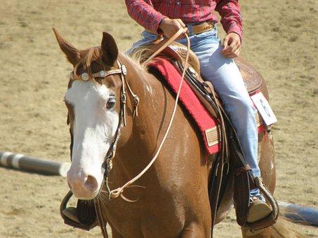 Horse, Rider, Races, Portrait, Western, Competition