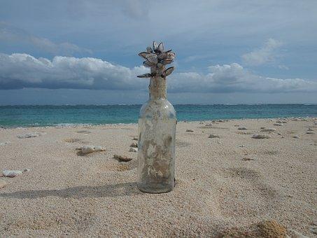 Yoron, Shell, Funny, Bottle, Beach, Sea