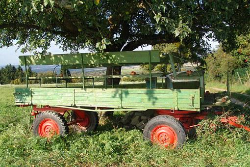 Trailers, Agriculture, Kremser, Nature, Tree, Rural