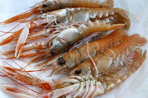 Langoustine, Shellfish, Seafood, Delicious, Dish