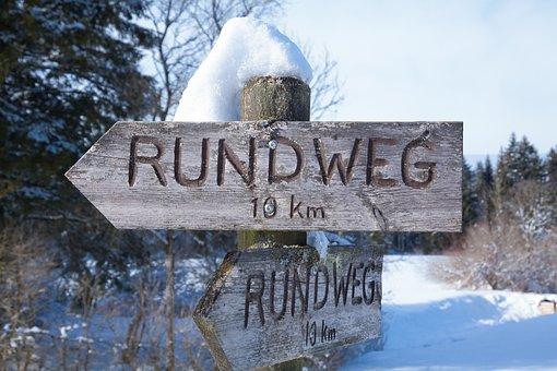 Directory, Wood, Flatly, Trees, Snow, White, Sunny