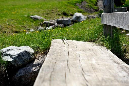 Away, Trail, Wood Transition, Web, Wood, Landscape