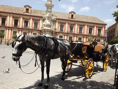 Seville, Horse, Plaza, City Walking Tour, City Centre