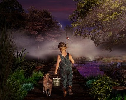 Fish, Child, Nature, The Fisherman, Dog, Walk, Night