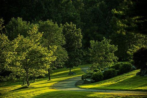 Summer, Park, Virginia, Outdoors, Green, Nature