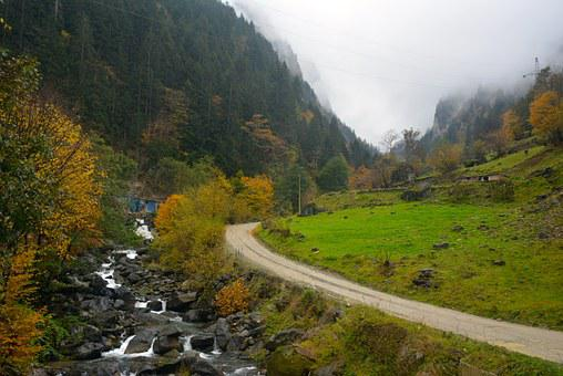 Highland, Road, Dd, Trabzon, Greens, Nature, Clouds