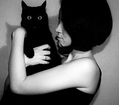 Black Cat, Cat, Man, Girl