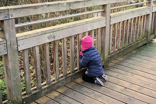 Curious, Curiosity, Child, Bridge, Discover, Vellmar
