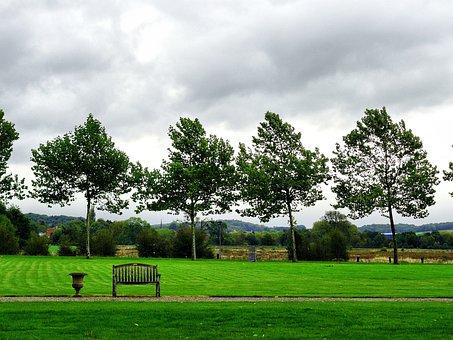 Trees, Nature, Plants, Green, Park, Saint Gerlach