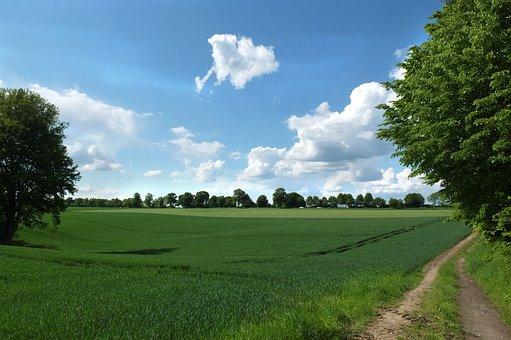 Mettmann, Landscape, Field, Lane, Sky, Clouds, Away