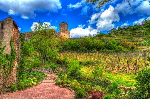 Kaysersberg, Alsace, France, Castle Ruins, Vineyards