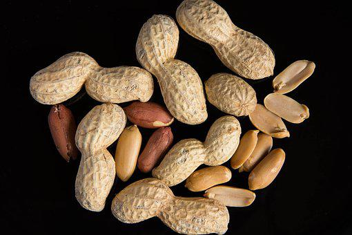 Peanuts, Black Background, Food, Eat