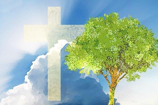 Cross, Life, Christianity, Jesus, Christ, God, Lord