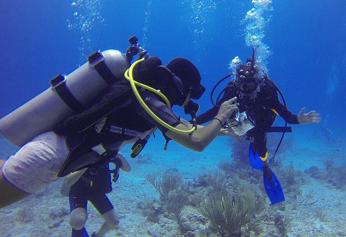 Scuba Diving, Bottles, Bubbles Fins