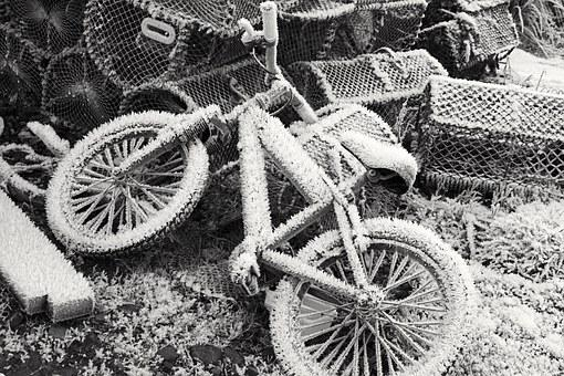 Bike, Frozen, Winter, Snow, Cold, Bicycle, Frost, White