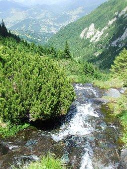 Fresh, Water, Waterfall, Cliff, Mountain Stream