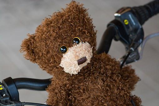 Teddy, Teddy Bear, Brown, Bike, Handlebar, A Ride