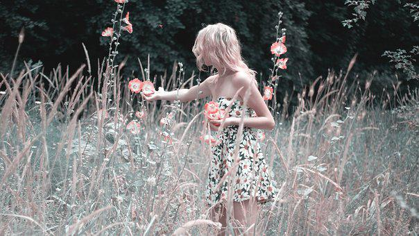 Girl Collects Flowers, Nature, Summer, Dress, Bloom