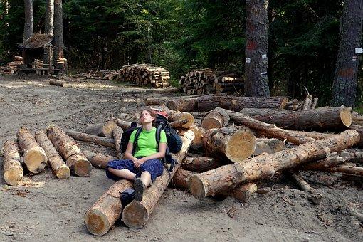 Bulgaria, Rila, Breather, Slash, Man, Fatigue, Forest