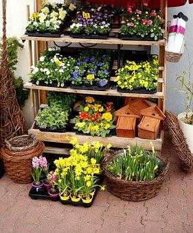 Flowers, Flower, Sale, The Market, Basket