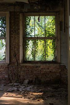 Window, Overgrown, Abandoned, Old, Ivy, Brickwall